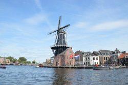 Dagje naar Haarlem